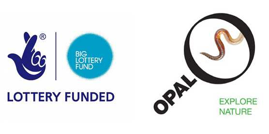 lottery funding and opal logo