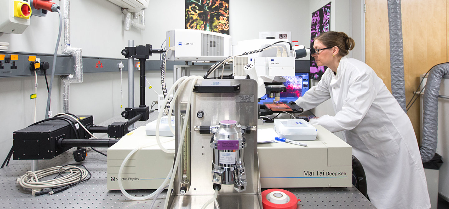 Dr Christina le Celso studying blood stem cells using a microscope in a lab