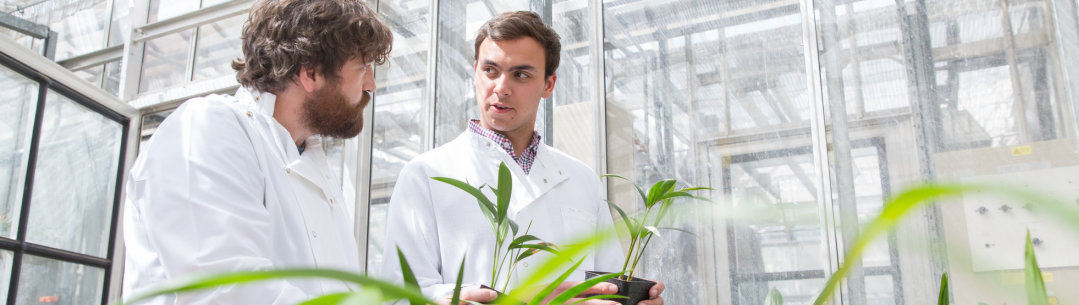 two researchers with plants in lab
