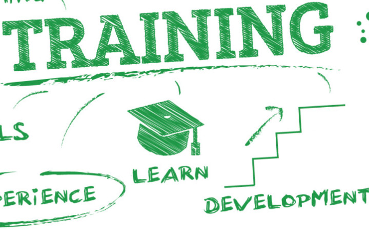 Training word cloud with off shoots to the words experience, learn, development in green font