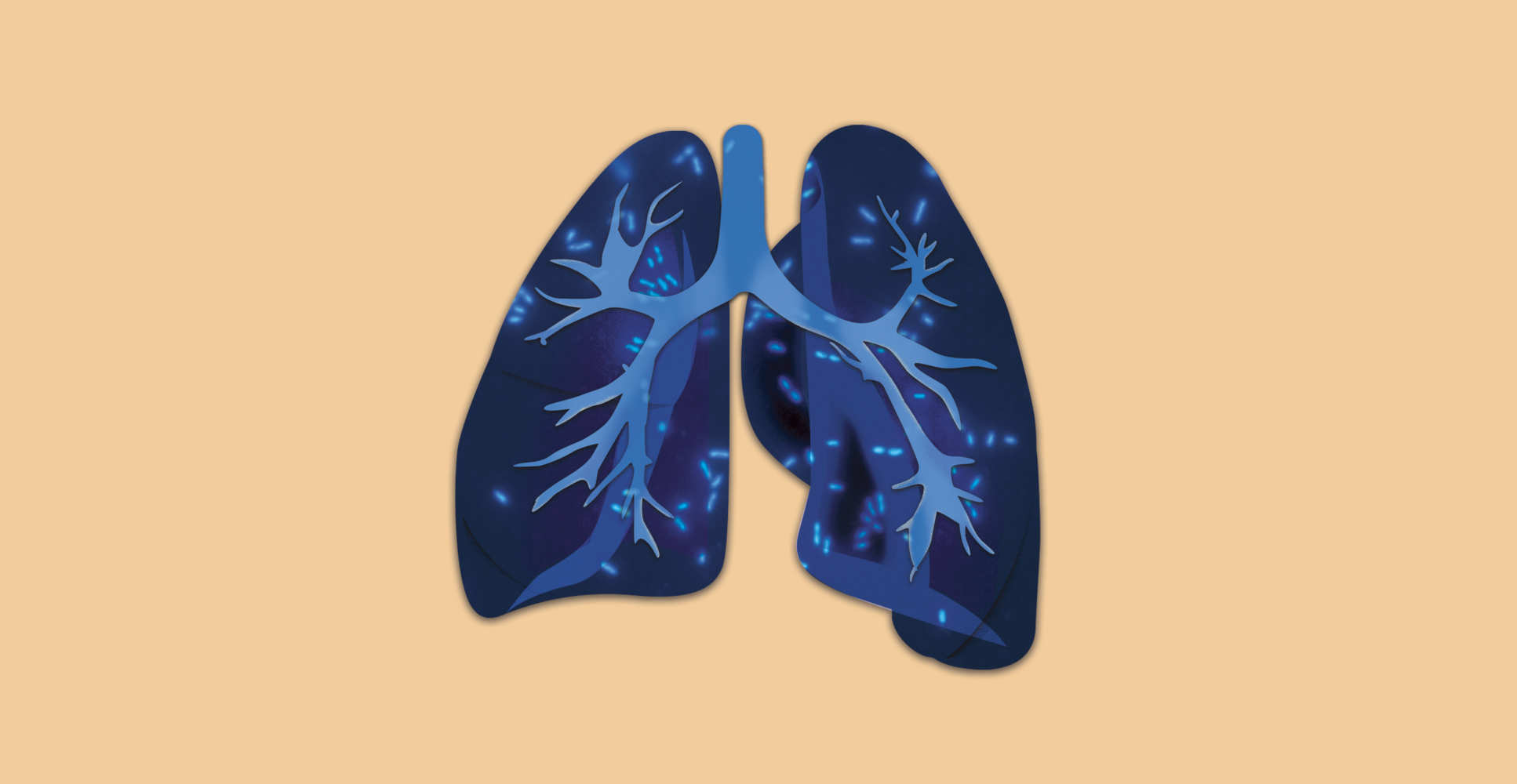 Illustration of detail of a lung overlaid with images featuring P. aeruginosa PAO1