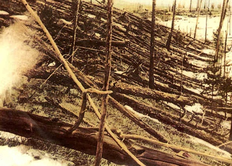 The Tunguska impact flattened 2,000 square kilometres of forest in the region