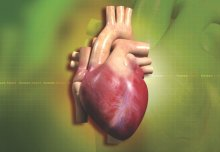 Heart scars reveal sudden death risk