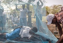 Malaria research agenda stresses the need for innovation and integration