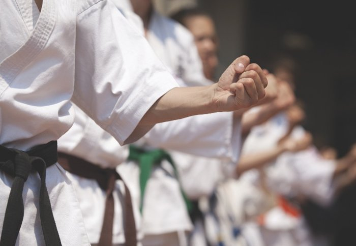 Black belts' white matter shows how a powerful punch comes