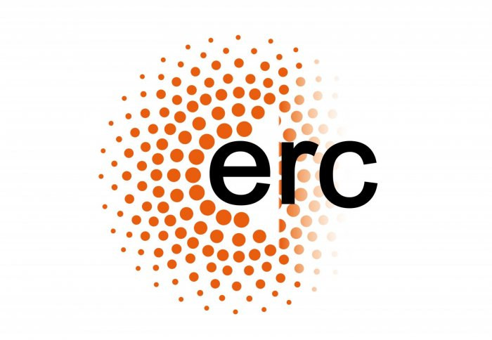 Image result for erc