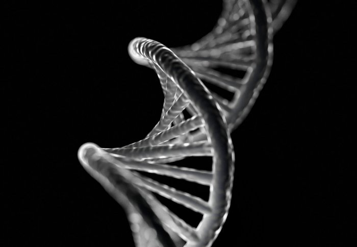 Twisting DNA double helix