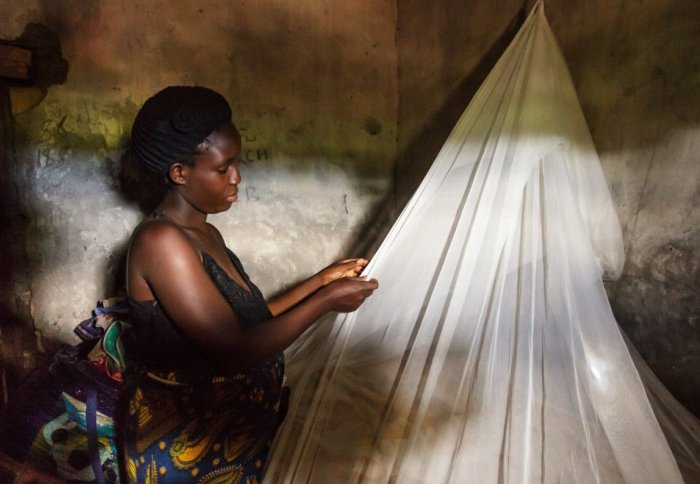 A villager installing a malaria net in her home in Zambia (USAID)