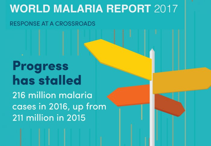 Prof Azra Ghani attends WHO World Malaria Report Launch in UK Parliament