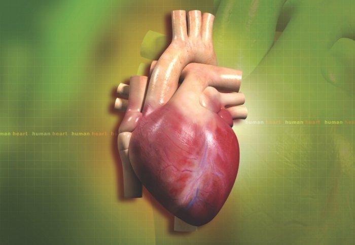 Heart Scars Reveal Sudden Death Risk