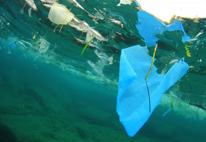 To Clean Up Ocean Plastics Focus On Coasts Not The Great